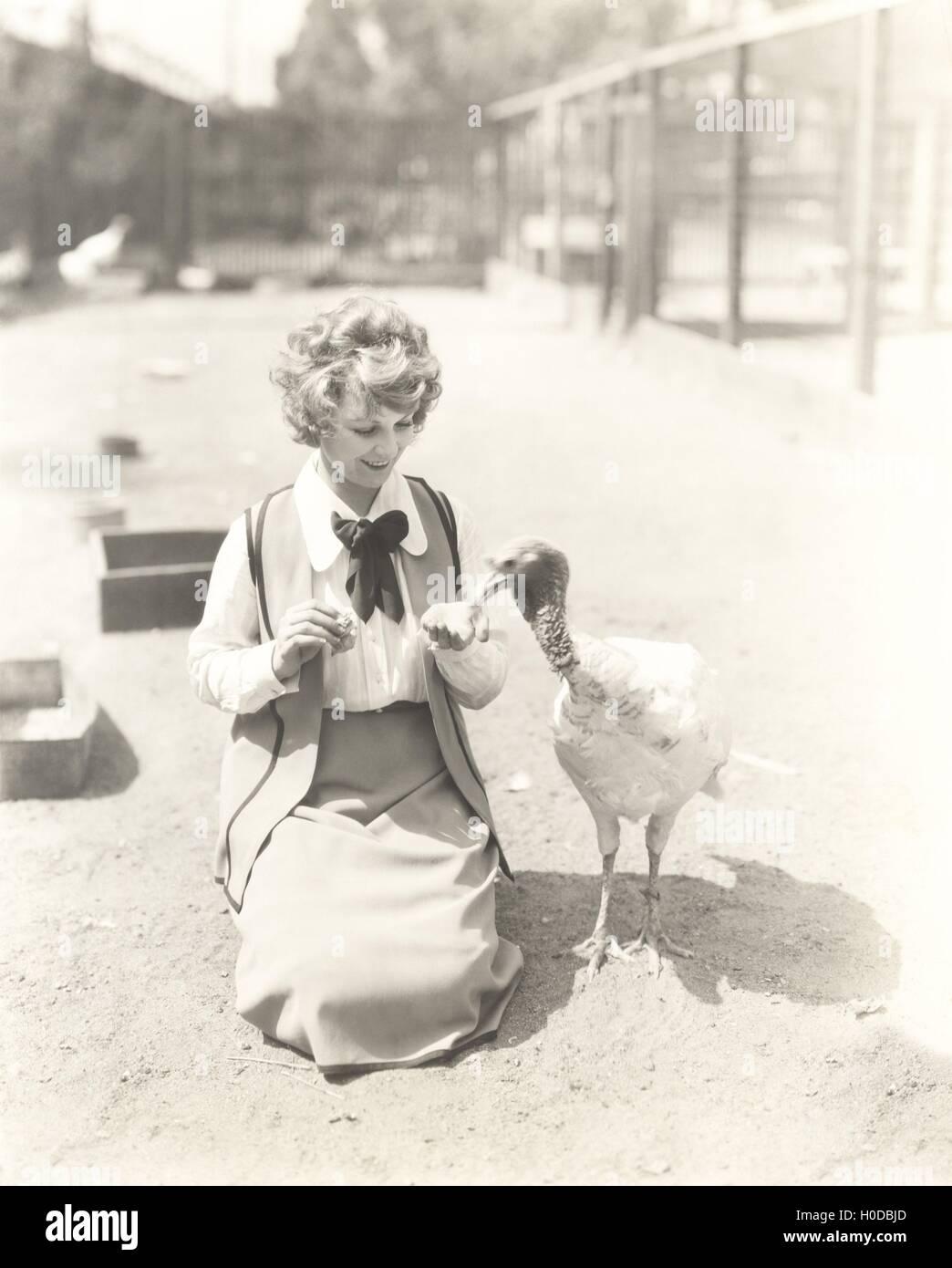 Woman hand feeding turkey - Stock Image