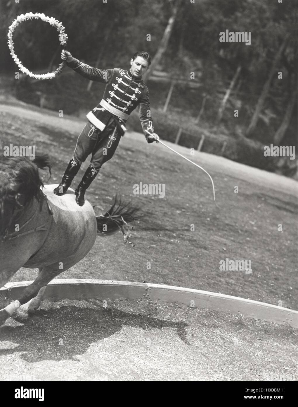 Man performing stunt while standing on horse Stock Photo