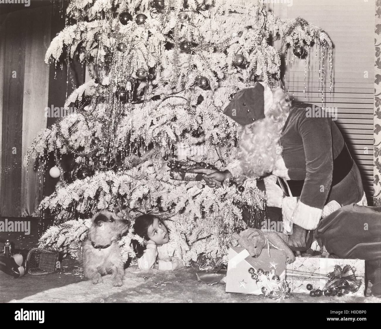 Santa Claus discovers little girl and her dog under Christmas tree - Stock Image