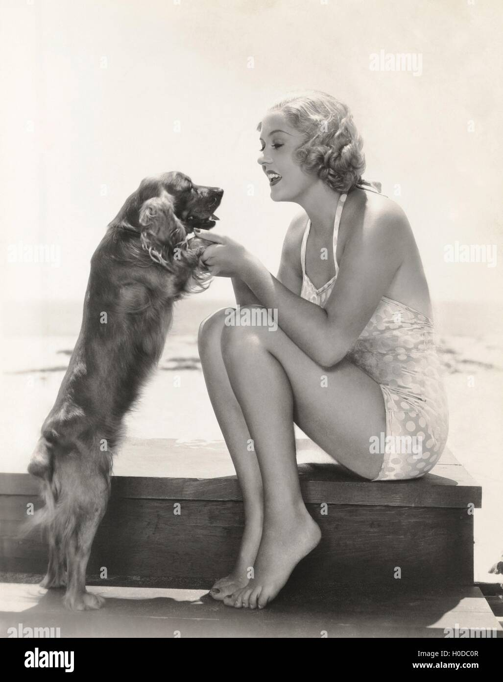 Young woman playing with Cocker Spaniel at beach - Stock Image