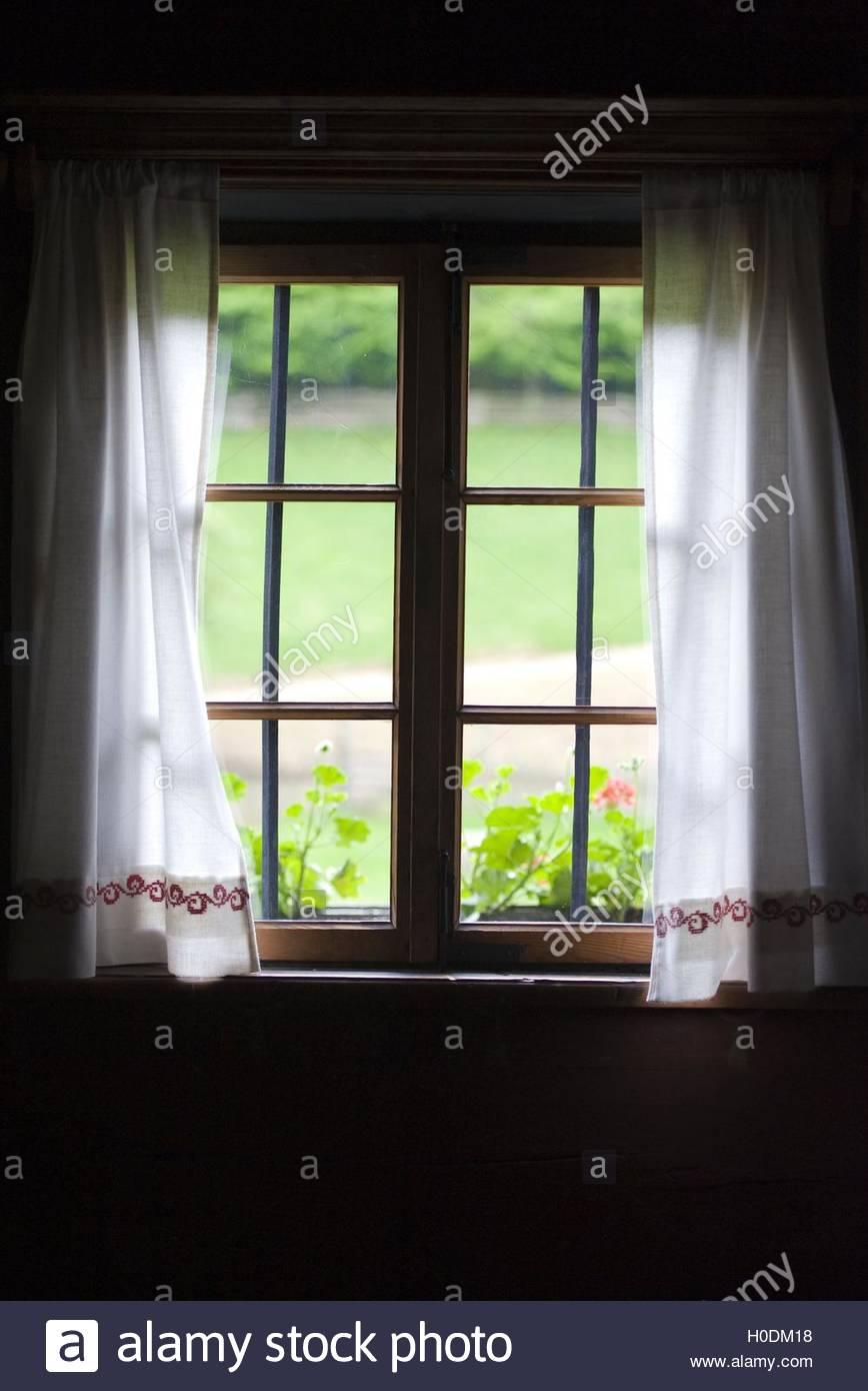BLWX095930 [ (c) blickwinkel/McPHOTOx/Foto Begsteiger Tel. +49 (0)2302-2793220, E-mail: info@blickwinkel.de, Internet: Stock Photo