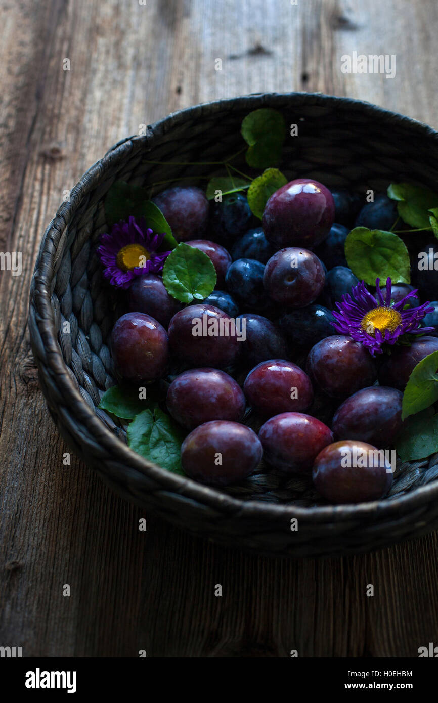 Fresh plums in a large basket on a rustic wooden table Stock Photo