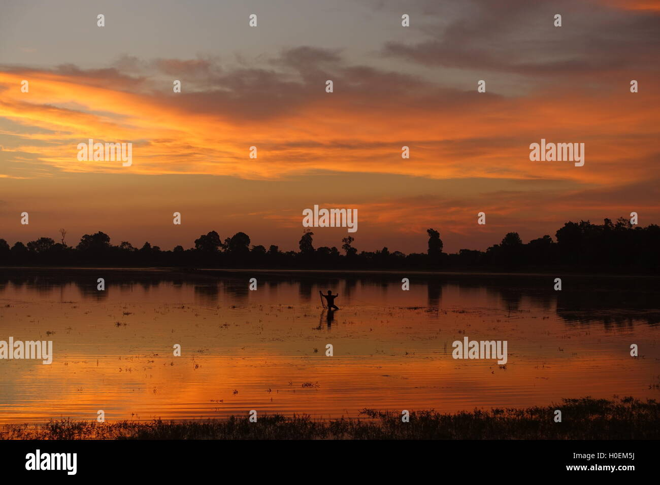 Man fishing in lake during sunrise in Siem Reap and Angkor Wat in Cambodia Stock Photo