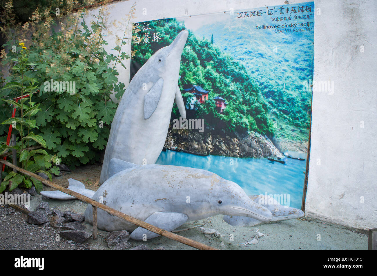 sculpture Chinese (Yangtze) river dolphin, Lipotes vexillifer - Stock Image