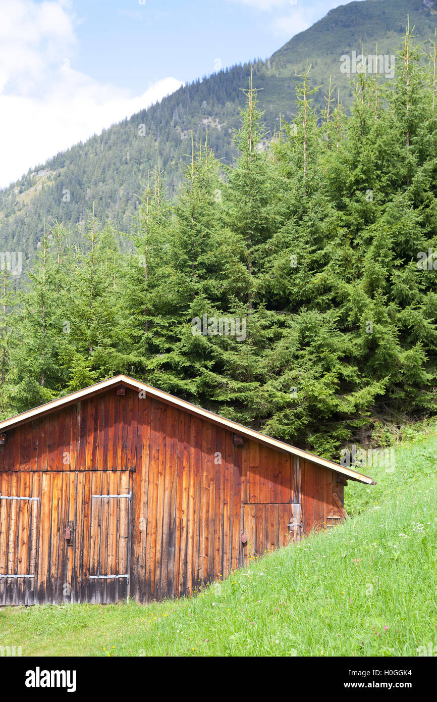 Wooden cabin with green mountain in Tirol, Austria - Stock Image