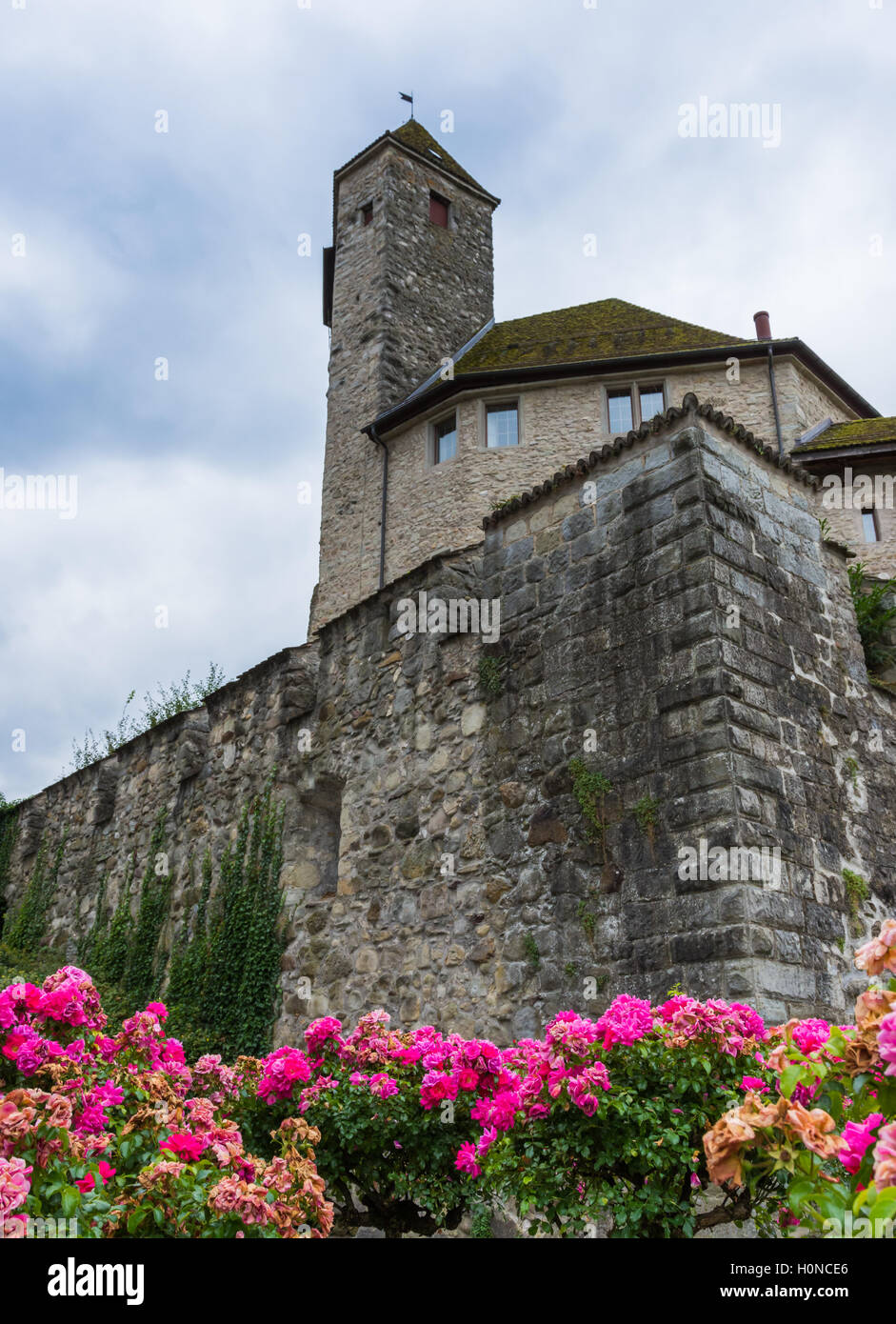 Rapperswil Castle, Sank Gallen, Switzerland - Stock Image