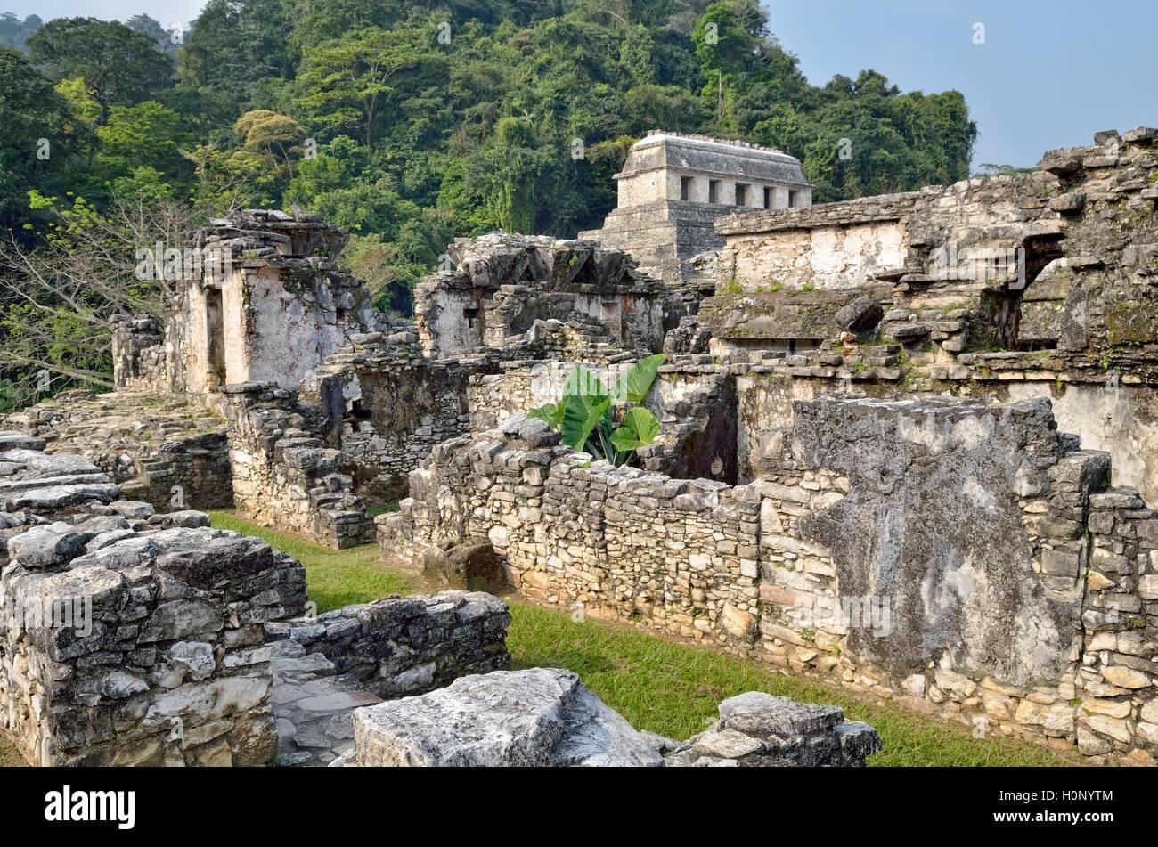 El Palacio, partial view, Temple of Inscriptions behind, Mayan ruins of Palenque, Chiapas, Mexico - Stock Image