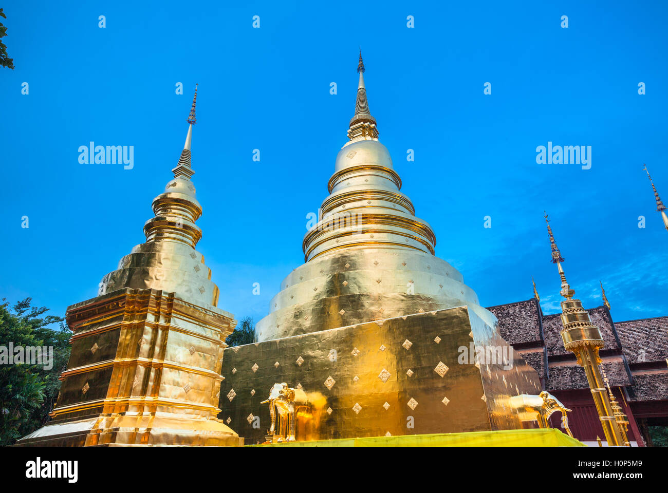 Dusk View of the golden stupa of Wat Phra Singh temple, the most revered temple in Chiang Mai, Thailand. - Stock Image