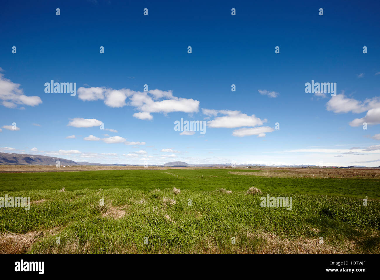 clouds in a blue sky over a lush fertile valley of farmland in Iceland - Stock Image