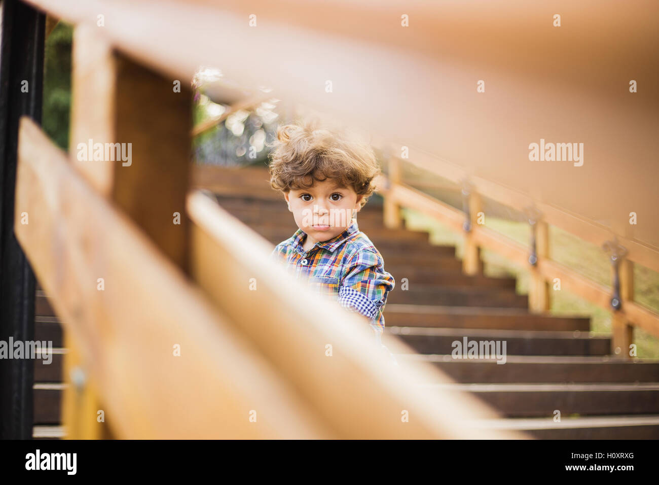 Portrait of little cute child sitting on wood stairs in city park. Boy looks at camera through wooden parapet of Stock Photo