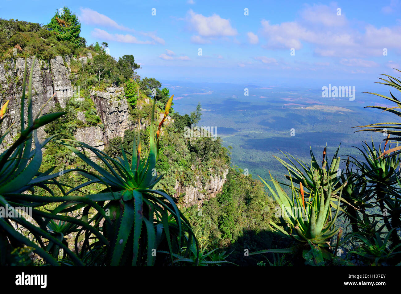 God's Window - so called for the panoramic view of the Lowveld (and in the distance the Kruger National Park - Stock Image