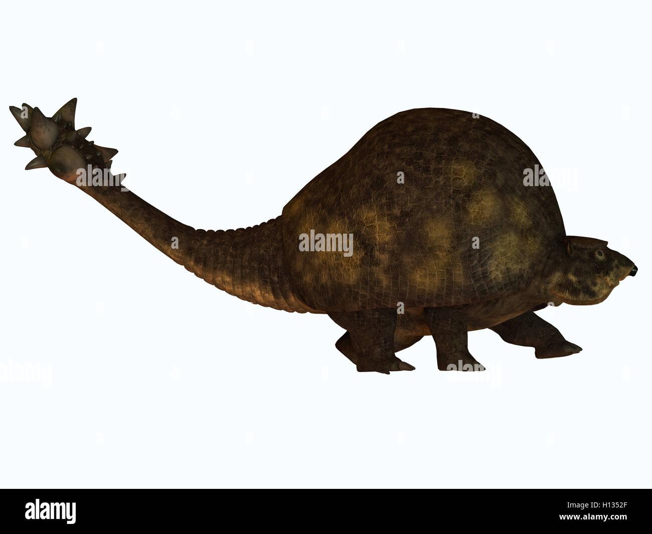 Glyptodont on White - Stock Image