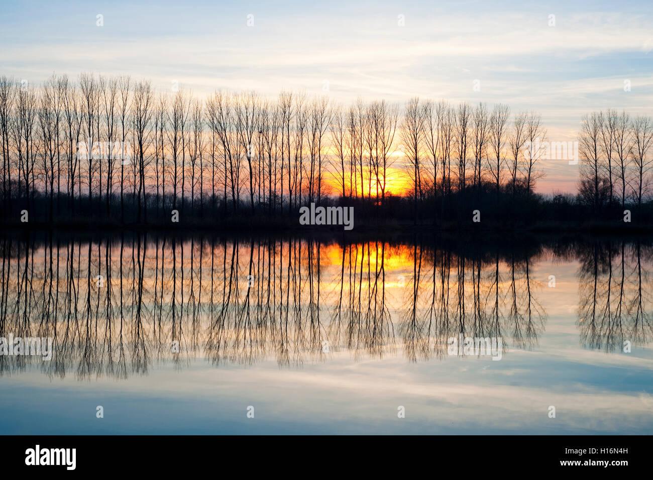 Sunset, Nature Reserve Herbslebener Teiche, Herbsleben ponds, Herbsleben, Thuringia, Germany - Stock Image