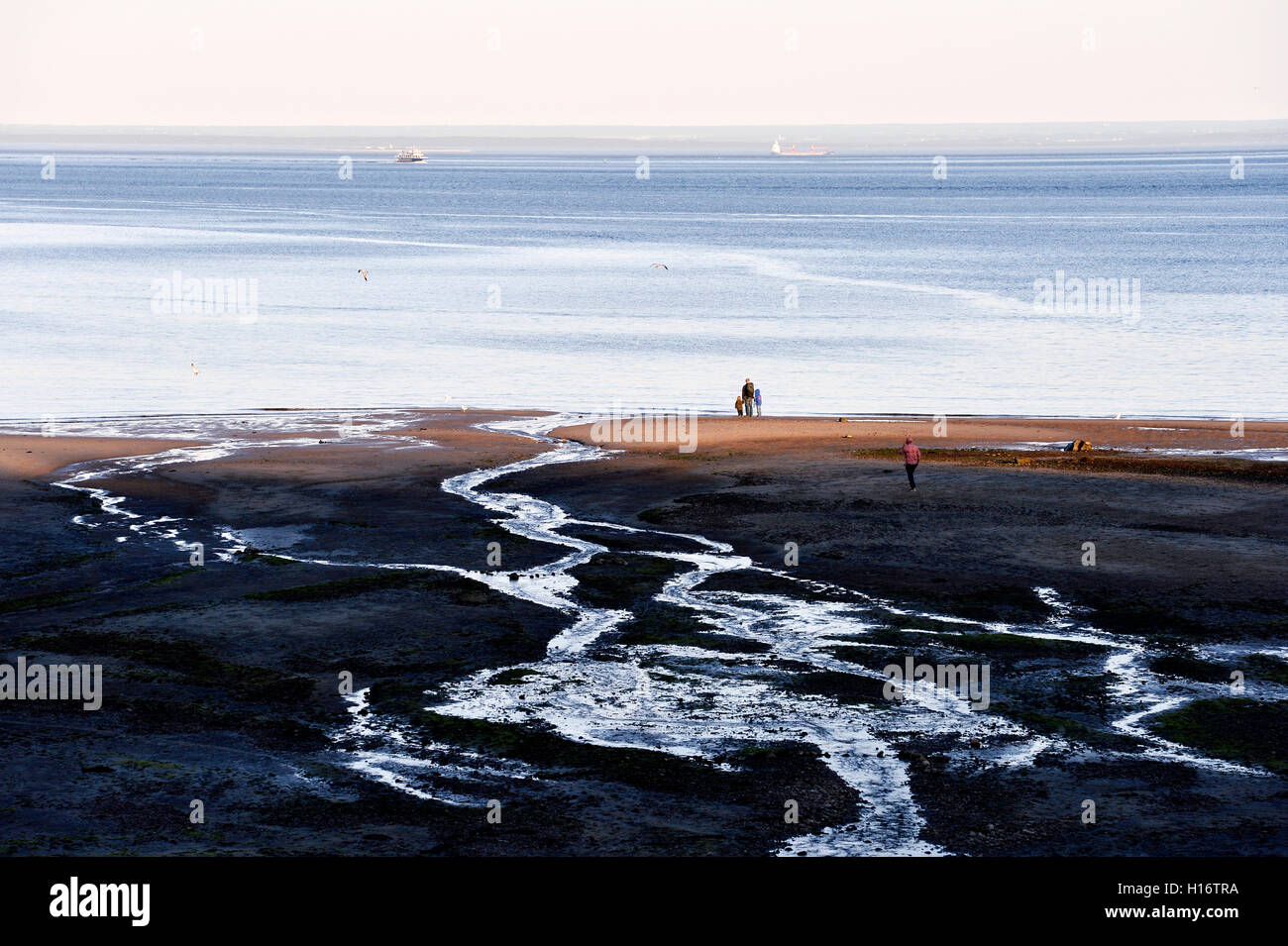 The low tide of St. Lawrence river in Tadoussac Stock Photo