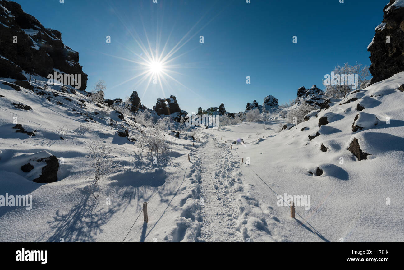 Sunshine, tracks in snow, lava field covered in snow, Krafla volcanic system, Dimmuborgir National Park, Mývatn, - Stock Image
