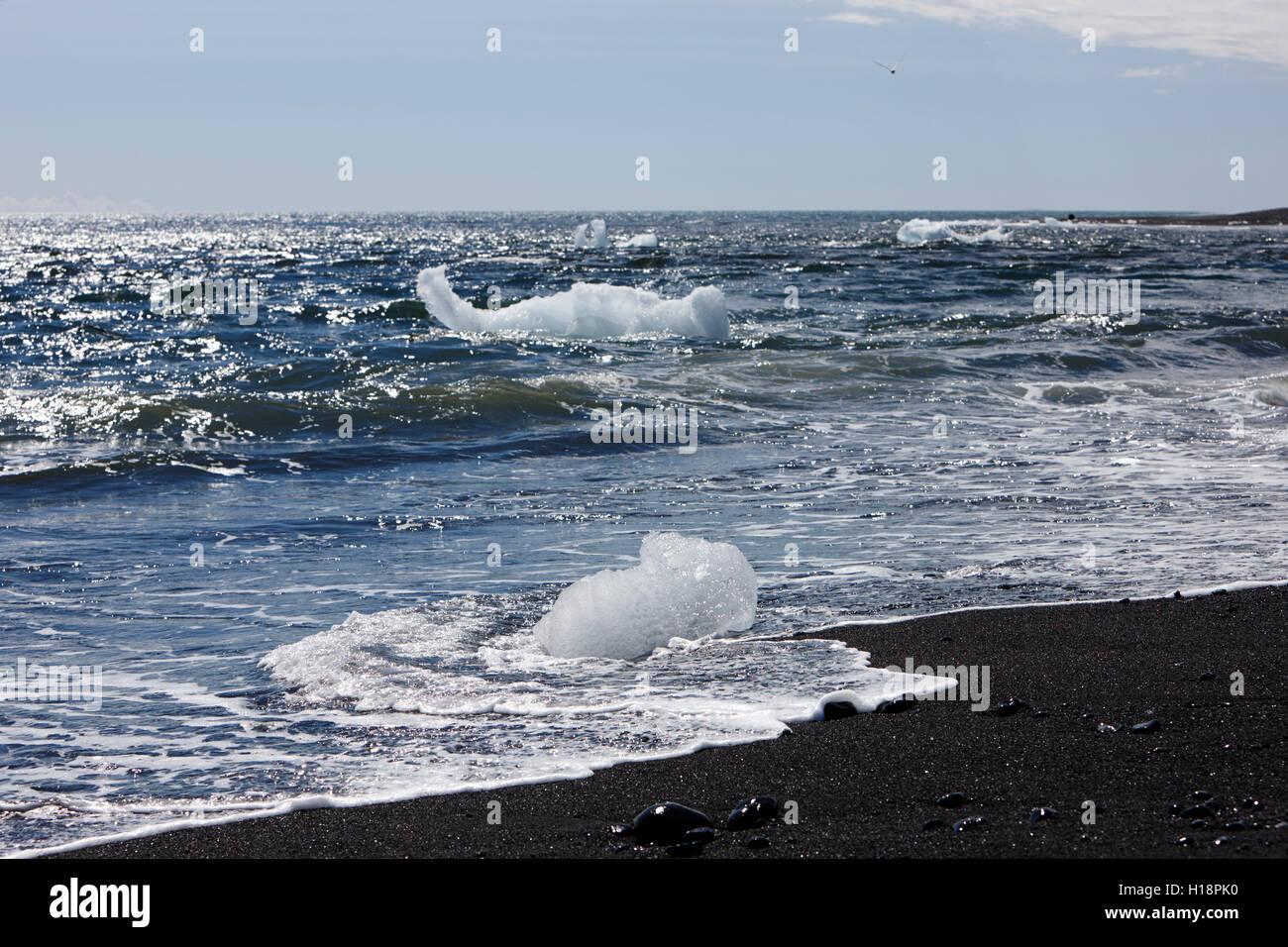 Icebergs washing up on black sand beach at jokulsarlon iceland Stock Photo