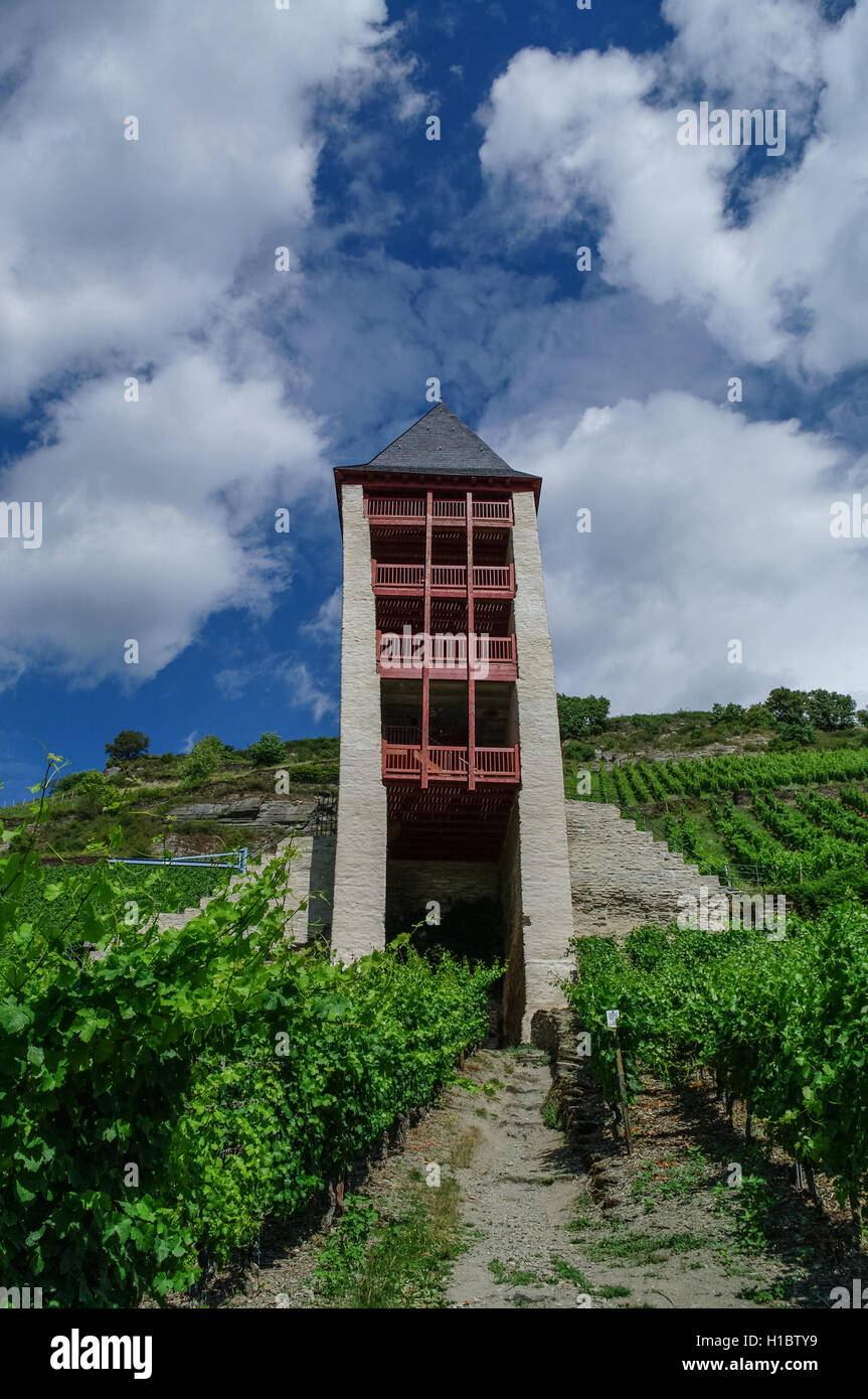 Medieval village Bacharach. Tower of city wall in slope of the hill, covered by wineyard. Rihne vally, Germany. - Stock Image
