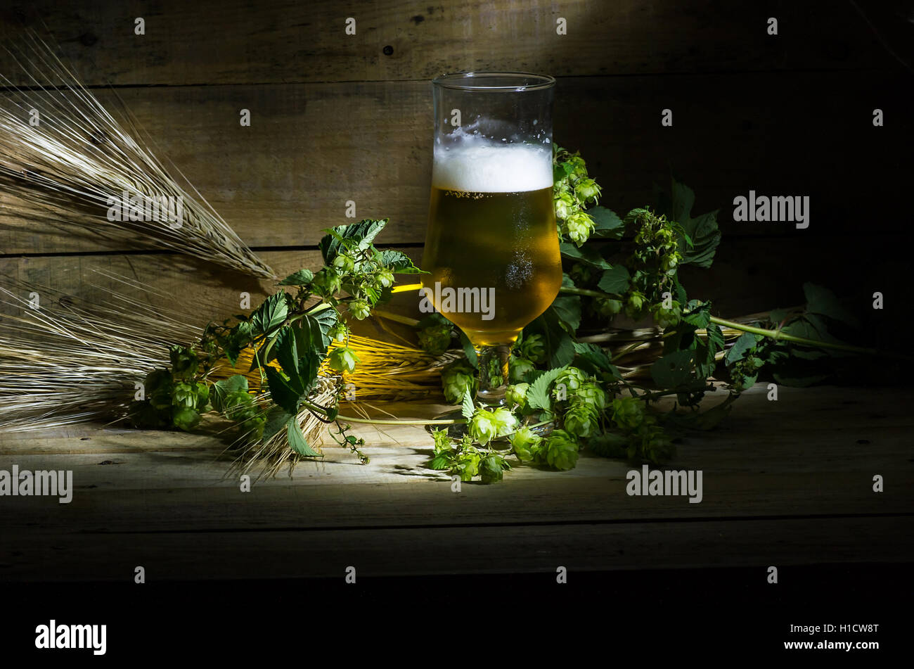 Still life with beer, hops and ears of corn on the wooden table - Stock Image