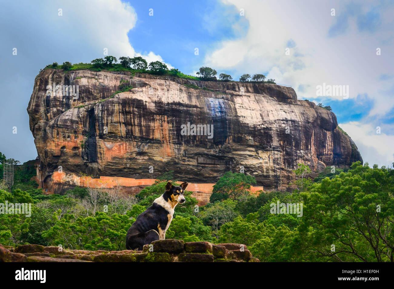 Sigiriya Rock Fortress, UNESCO World Heritage Site, seen from Pidurangala Rock, Sri Lanka, Asia - Stock Image