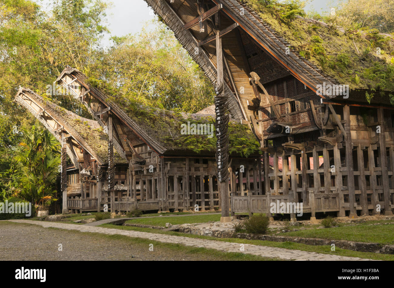 Indonesia, Sulawesi, Tana Toraja, Ke'te Kesu, village with Torajan houses (tongkonan) - Stock Image