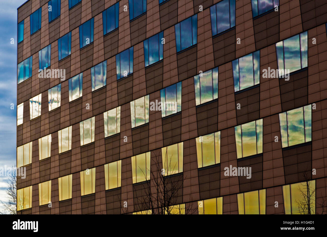 windows of a business house mirroring the sky - Stock Image
