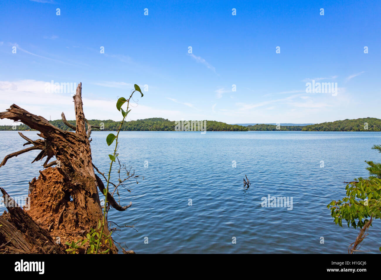 Piney River Shoals near Watts Bar Dam in Meigs county, Tennessee - Stock Image