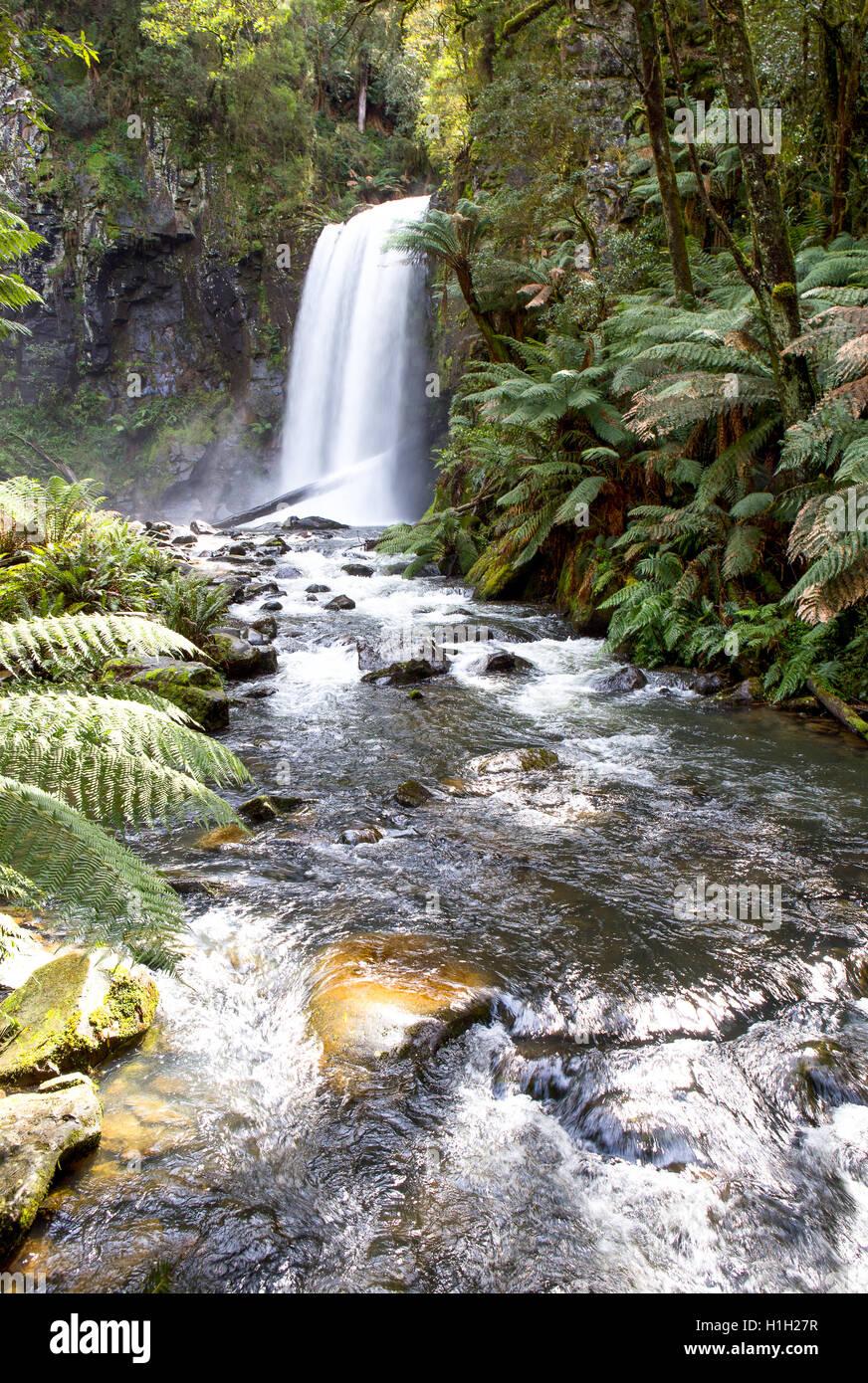 Waterfall, Rainforest - Stock Image
