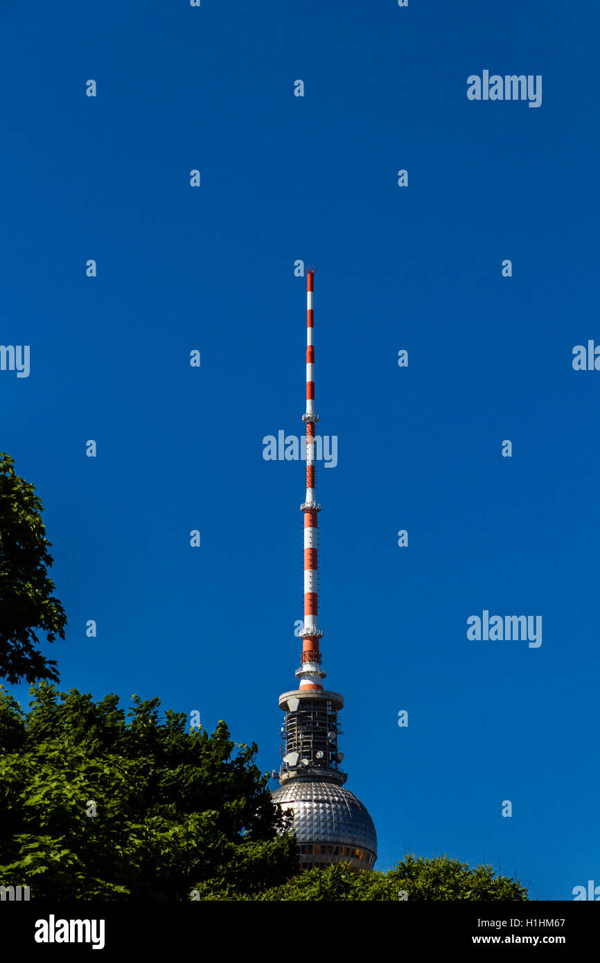 top of the berlin television tower hidden behinde some tree crow - Stock Image
