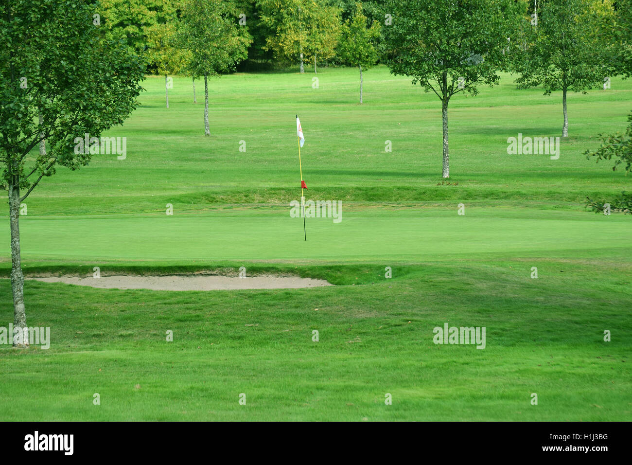 Putting green on a golf course. - Stock Image