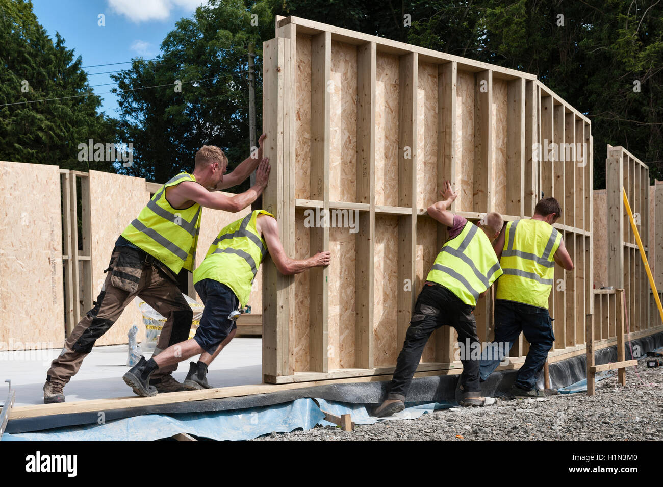 Housebuilding, UK. Builders installing a prefabricated timber wall panel as part of a new house - Stock Image