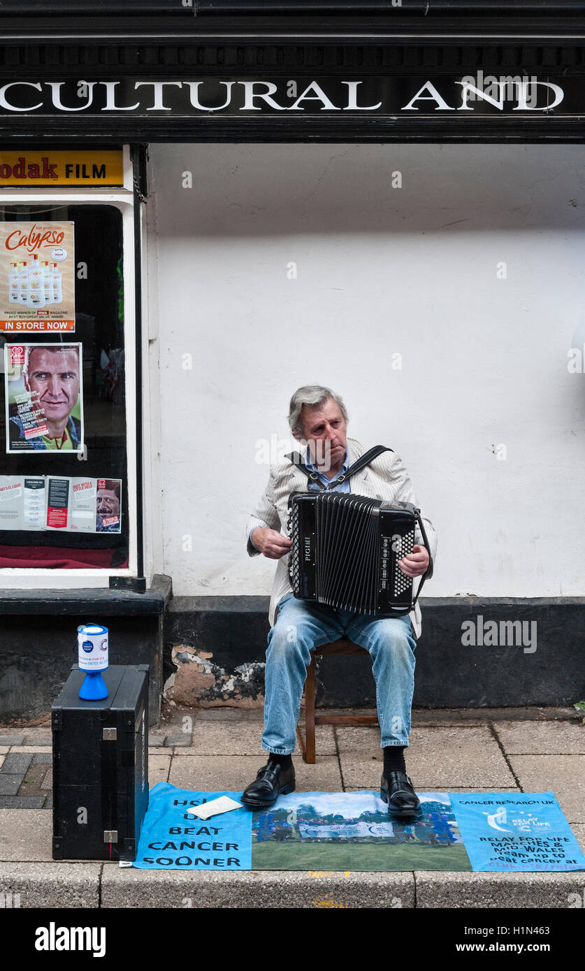 Presteigne, Powys, UK. A local musician playing the accordion to raise money for cancer research - Stock Image