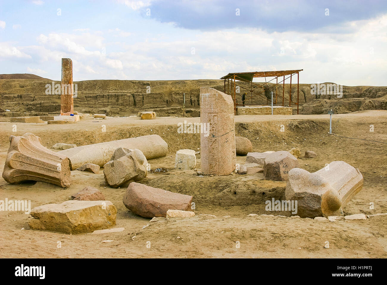 Egypt, Nile Delta, Tanis, First pylon, with reused palmiform columns. They come from Abusir and date from the Old - Stock Image
