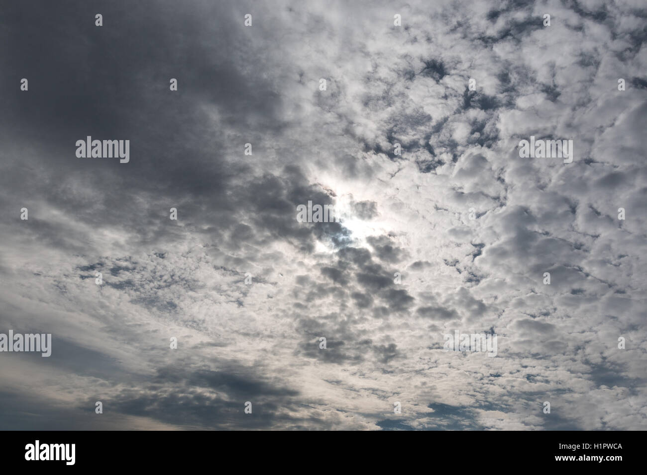 many small fluffy clouds across the sky - Stock Image
