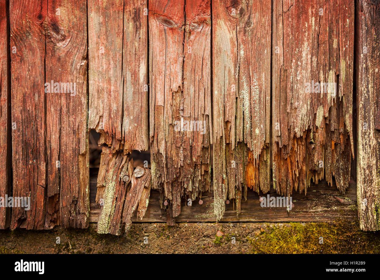 Image of worn old door planks. - Stock Image