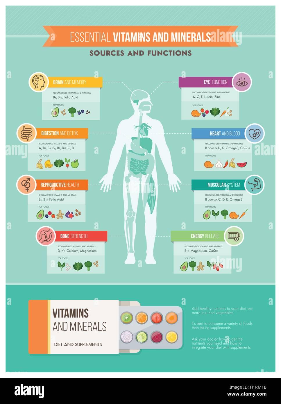 Nutrition, vitamins and health infographics: human body, organs ...