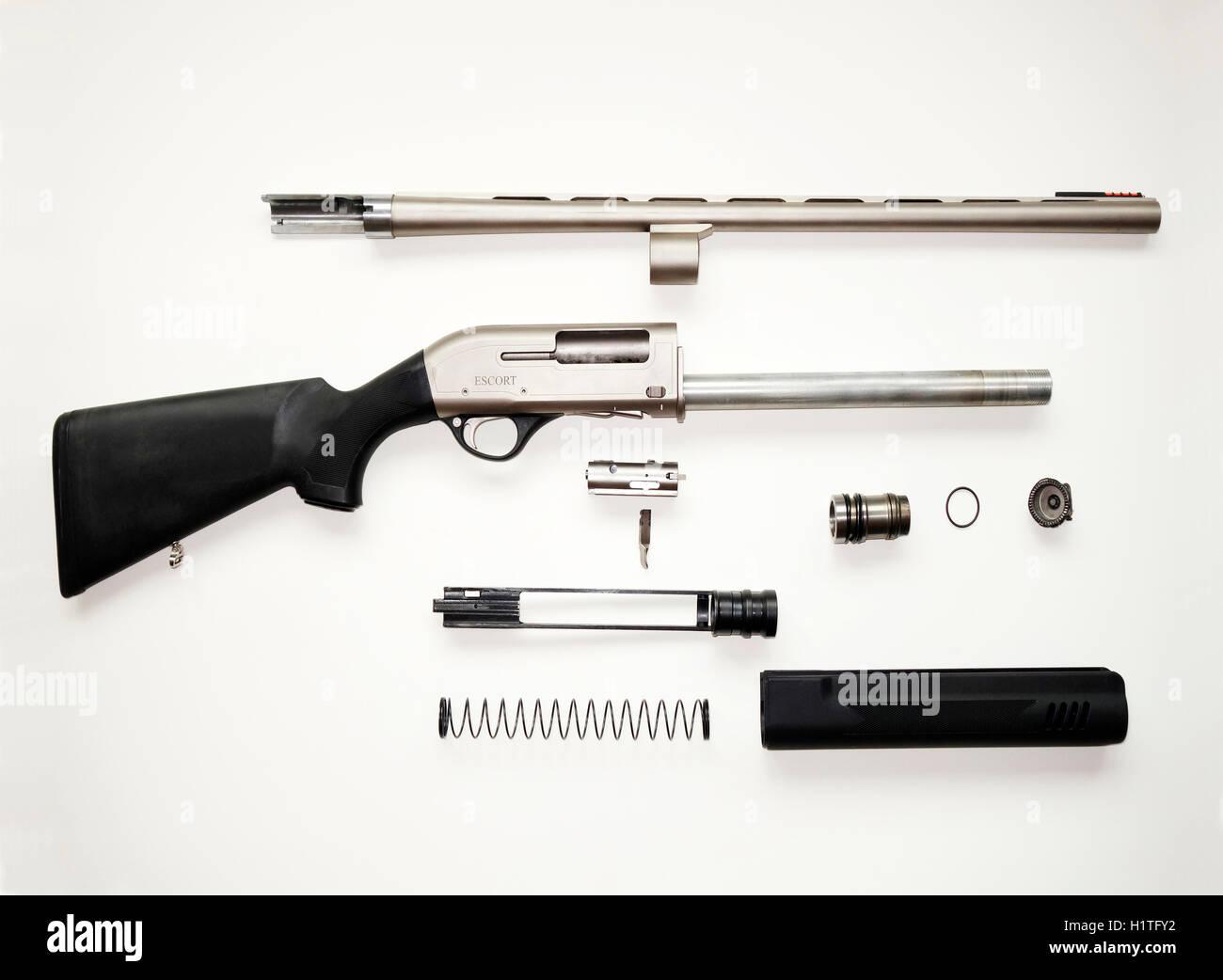 Disassembled semiautomatic shotgun. - Stock Image