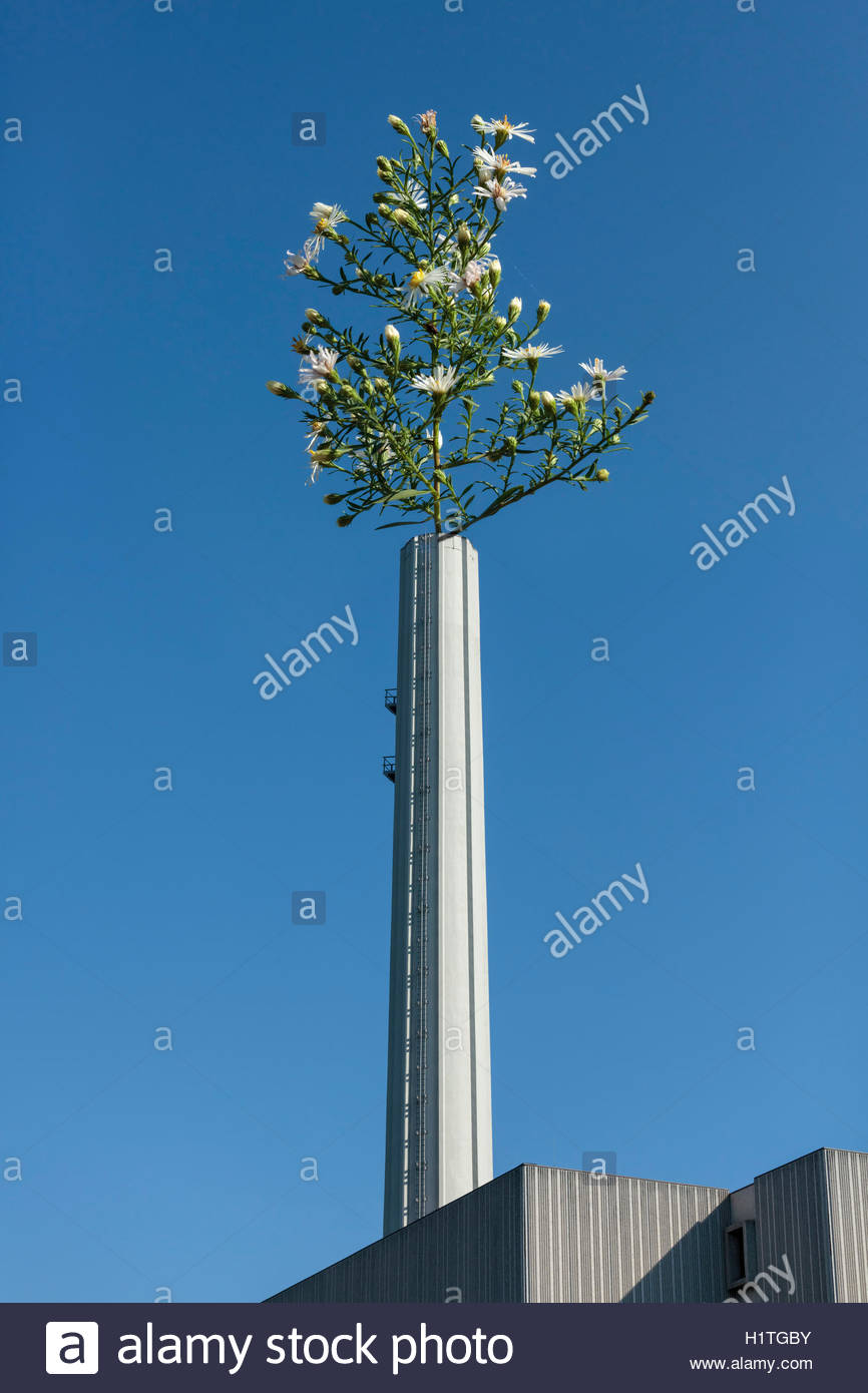 Flower and Chimney. Concept of clean air carbon emission reduction - Stock Image