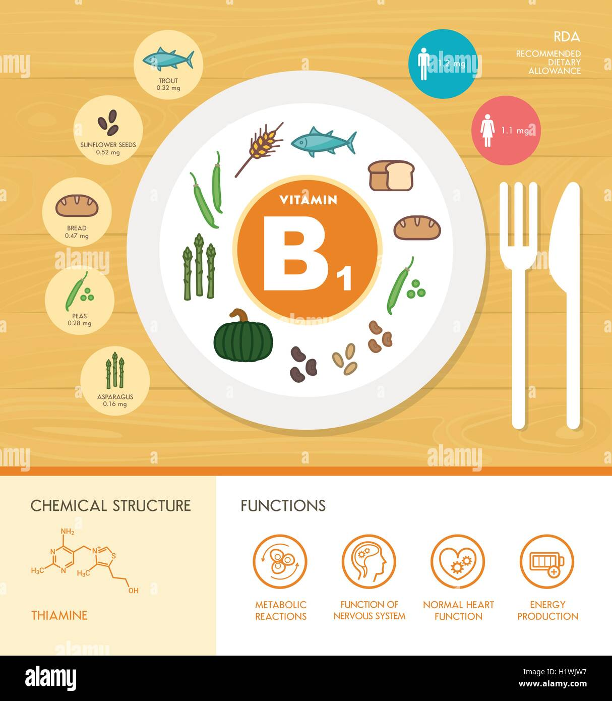 Vitamin B1 nutrition infographic with healthcare and food icons: diet, healthy food and wellbeing concept Stock Vector