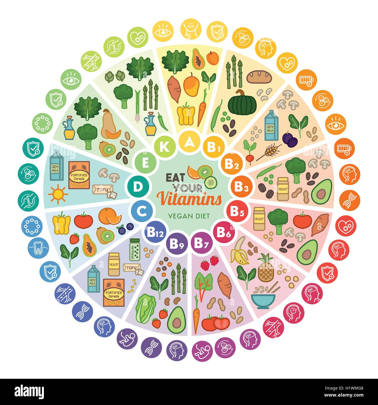 Vitamin vegan food sources and functions, rainbow wheel chart with food icons, healthy eating and healthcare concept - Stock Image