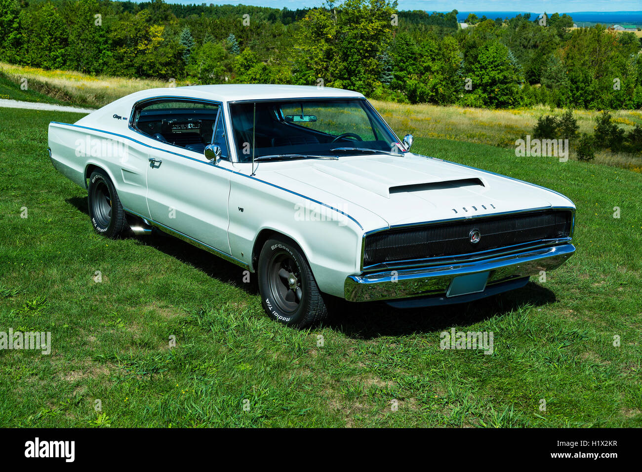 1966 Dodge Charger - Stock Image