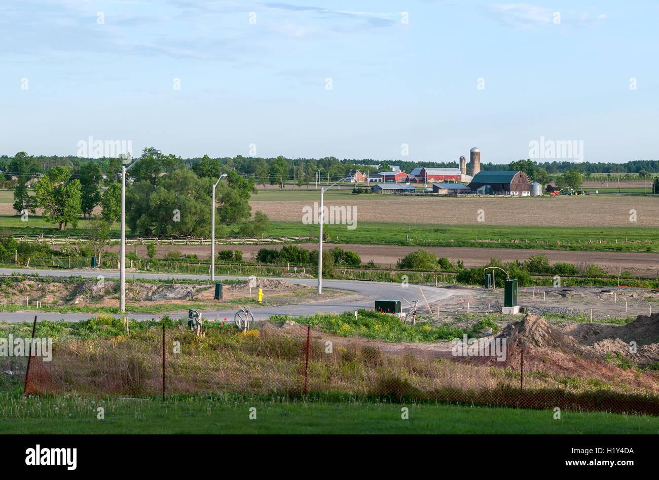 urban construction borders a farm - Stock Image