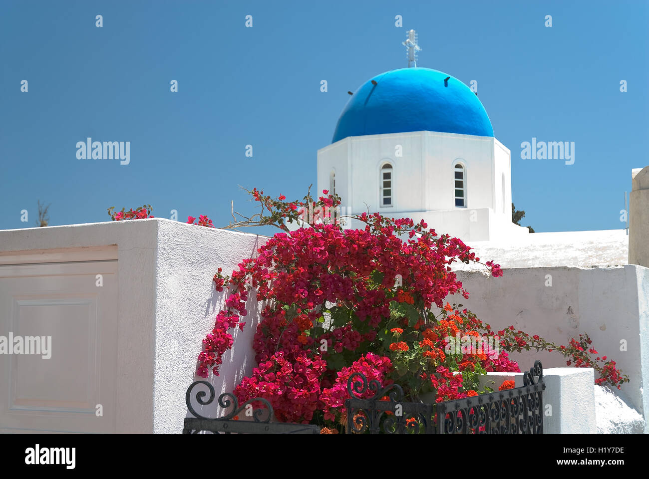 red bush and blue cupola - Stock Image