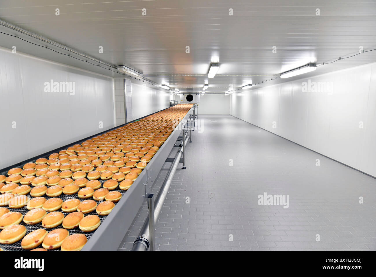 Production line in a baking factory with Berliners - Stock Image