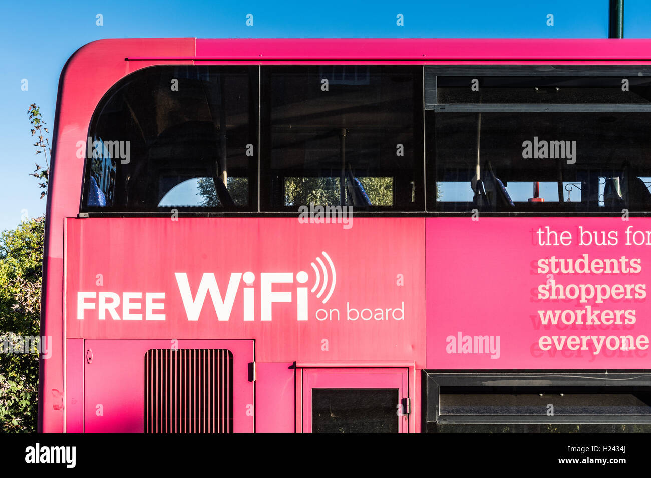 Free WiFi on board pink double decker bus - Stock Image