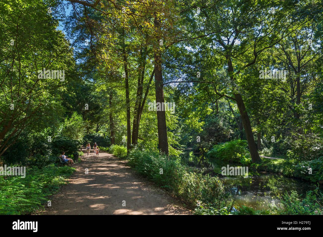 Path through the Tiergarten, Berlin, Germany - Stock Image