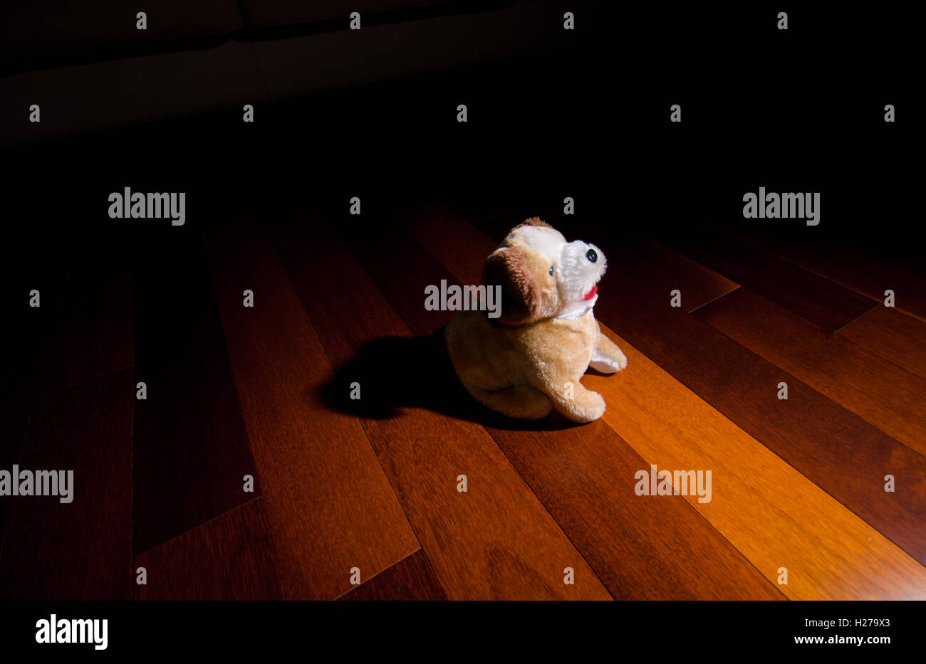 Toy Plush Puppy dog sitting in front of spotlight - Stock Image