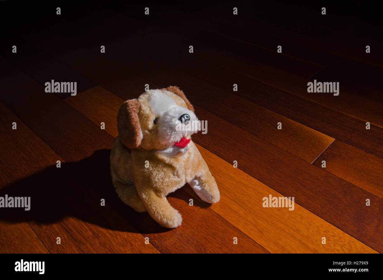 Plush dog doll toy sitting obediently in front of spotlight - Stock Image
