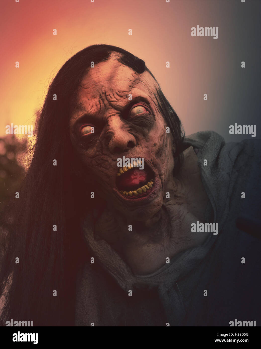 A closeup of a scary dead zombie momster outside for a halloween, fear or death concept. - Stock Image