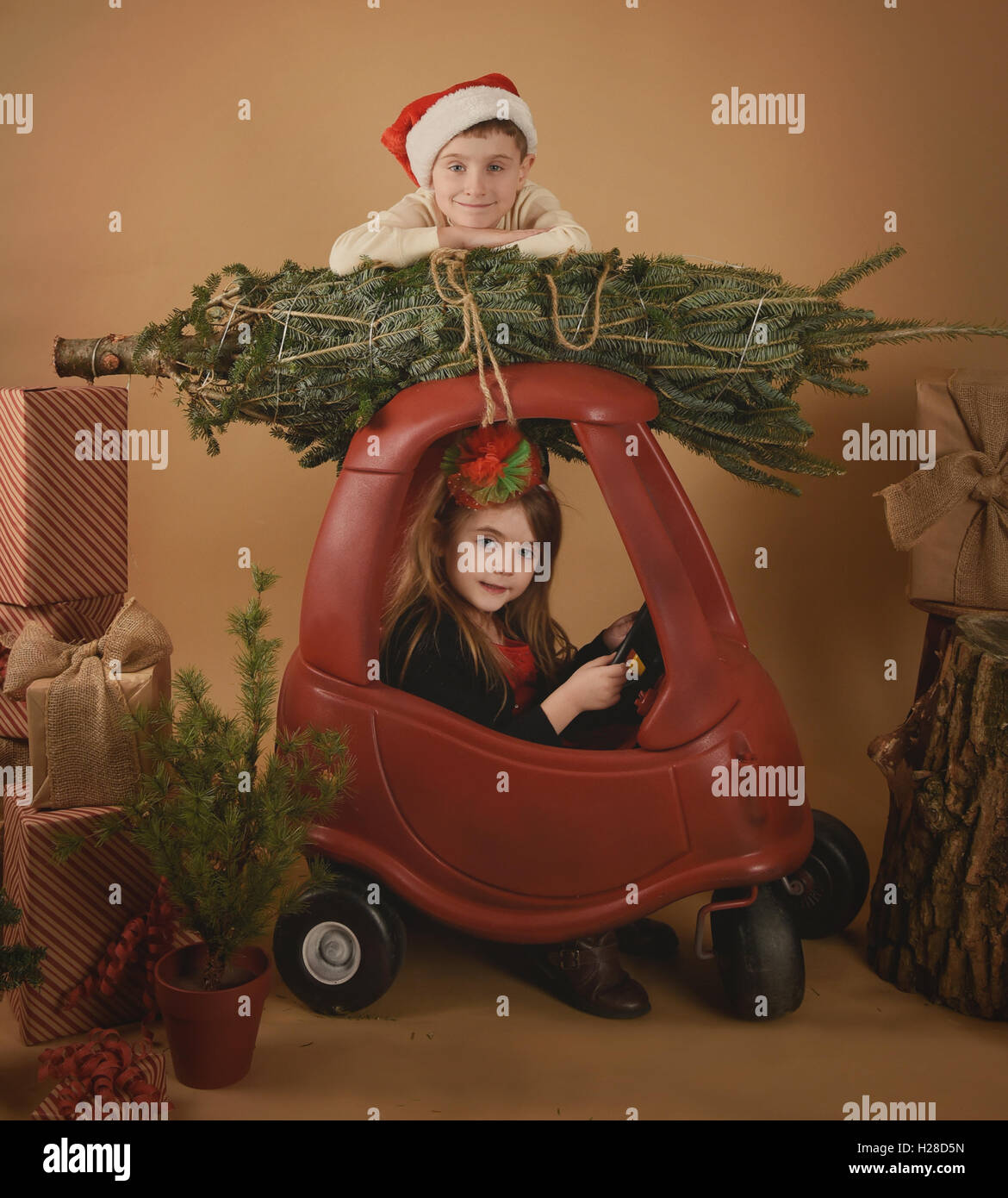 Two children are playing Christmas in a studio background with a tree and presents for a holiday or decoration concept. - Stock Image