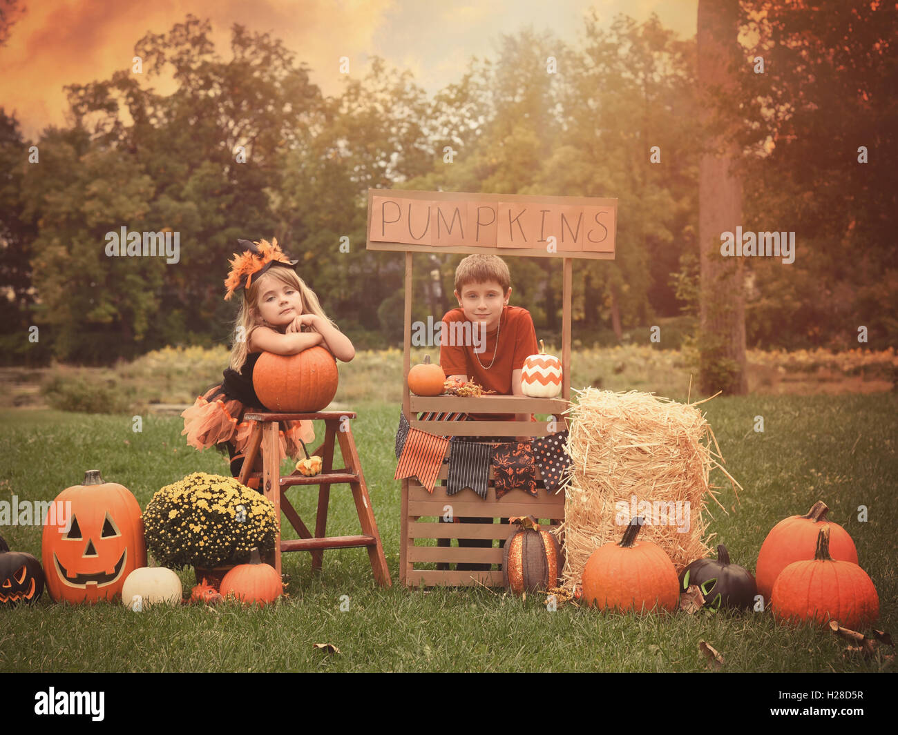 Two children are sitting outside at a wooden stand selling Halloween pumpkins for a holiday activity concept or - Stock Image